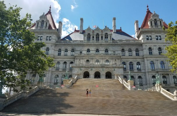 The New York State Legislature